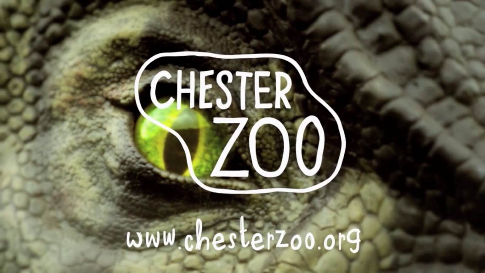 12 Music Chester Zoo Dinosaurs TV Advertisement